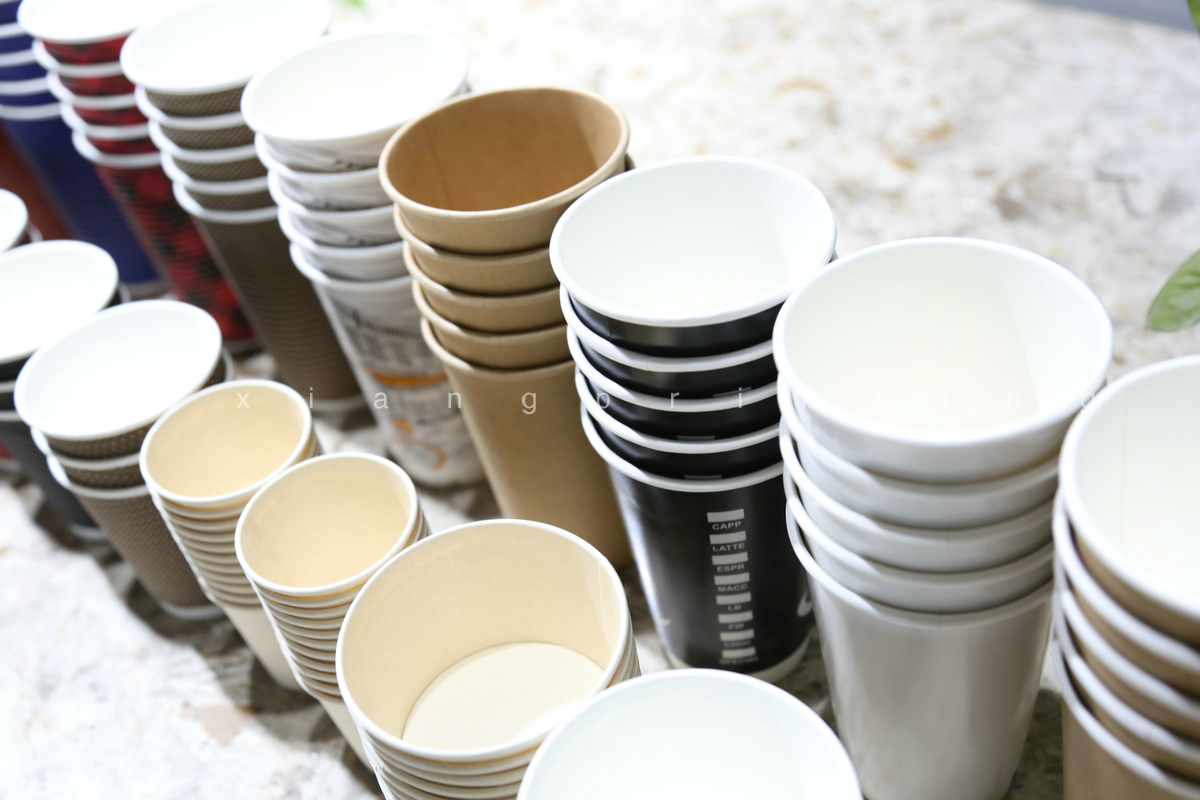Take Away Biodegradable Paper Cup